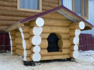 Строим будку для хаски и алабая своими руками